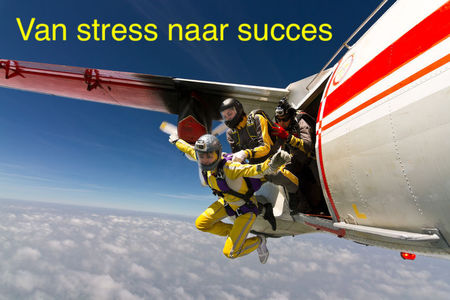 NAAR WEBINAR MINDSET FOR SUCCESS
